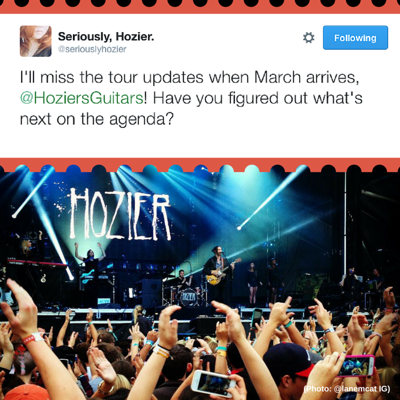 Next for Hozier's Guitars